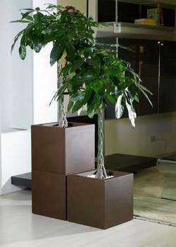 Кашпа за цветя - KUBE (50x50x50h)