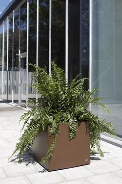 Кашпа за цветя със система - CITY PLUS (60x60x60)