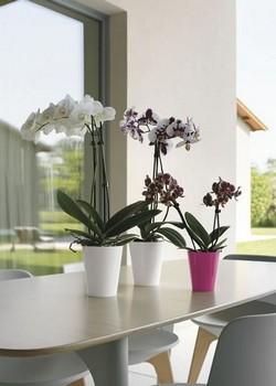 кръгла кашпа/саксия  за орхидея с диам 12,5/15 см Н